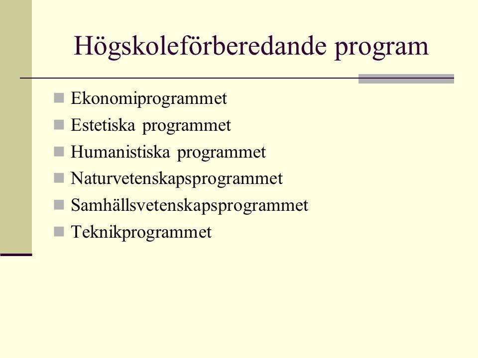 Högskoleförberedande program Ekonomiprogrammet Estetiska programmet Humanistiska programmet Naturvetenskapsprogrammet Samhällsvetenskapsprogrammet Tek