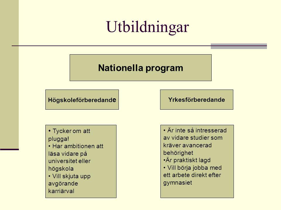 Utbildningar Nationella program Högskoleförberedand e Yrkesförberedande Tycker om att plugga! Har ambitionen att läsa vidare på universitet eller högs