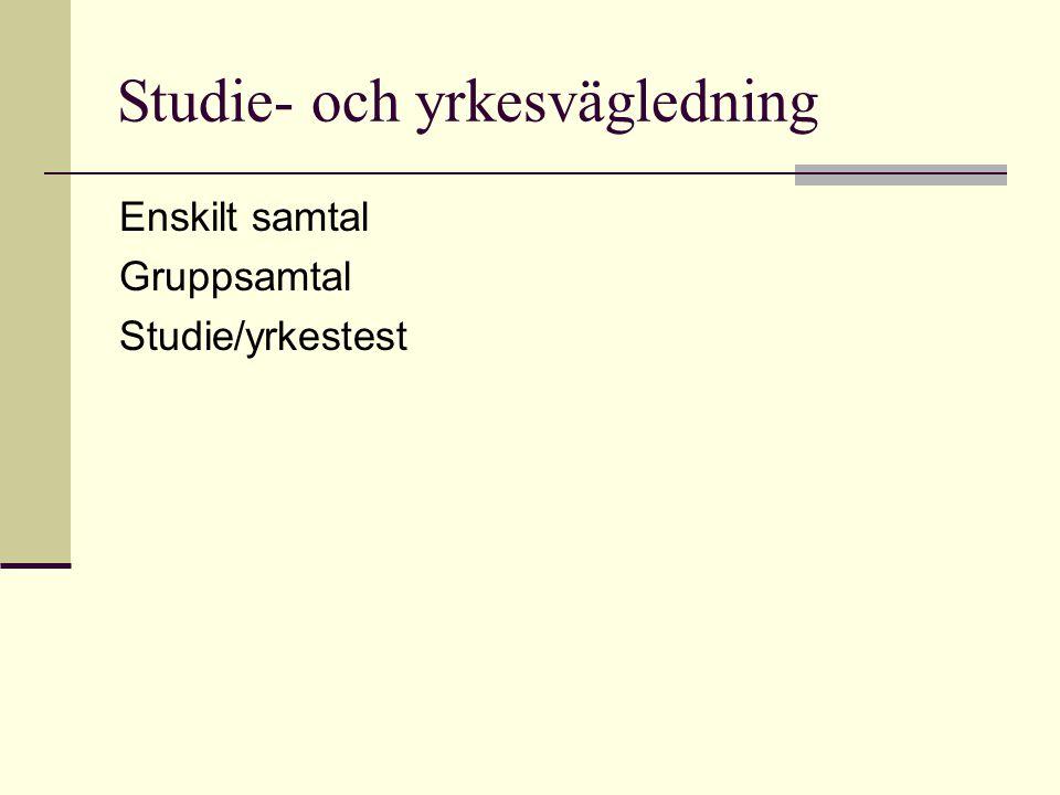 Studie- och yrkesvägledning Enskilt samtal Gruppsamtal Studie/yrkestest