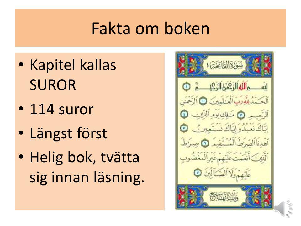 Fakta om boken Kapitel kallas SUROR 114 suror Längst först Helig bok, tvätta sig innan läsning.
