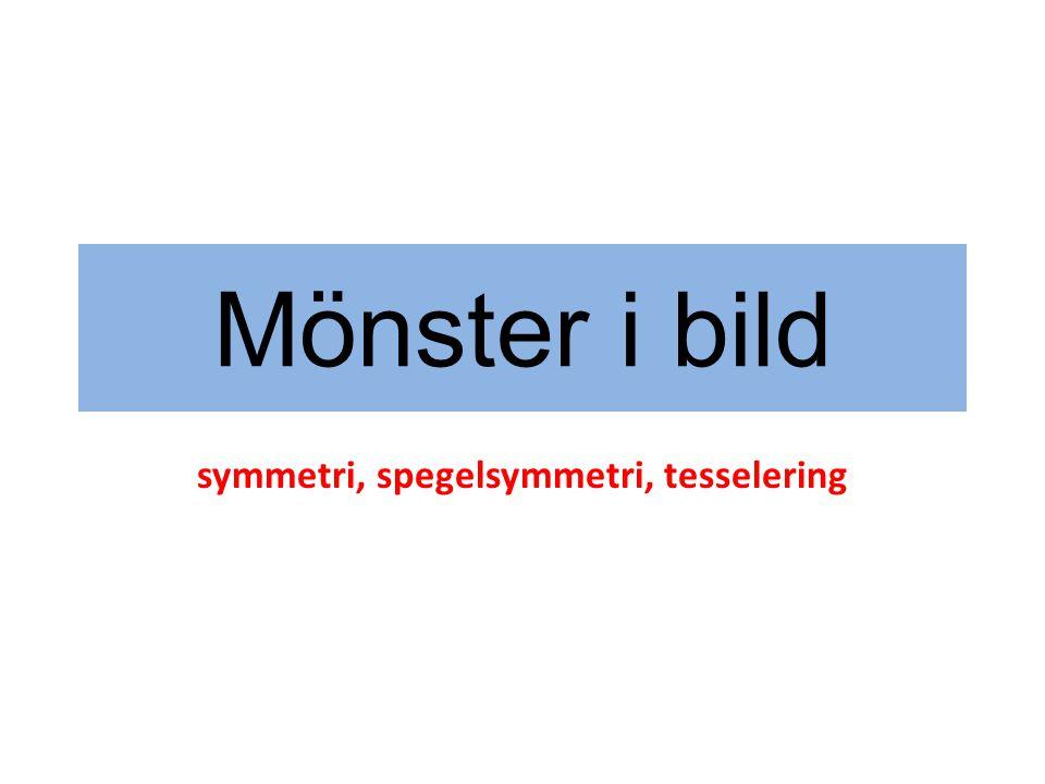symmetri Ordet symmetri kommer från grekiskans symmetros som betyder harmonisk.