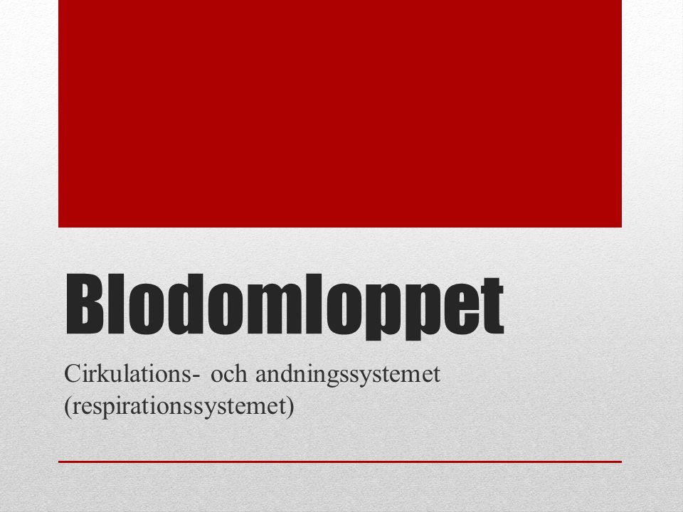 Blodomloppet Cirkulations- och andningssystemet (respirationssystemet)