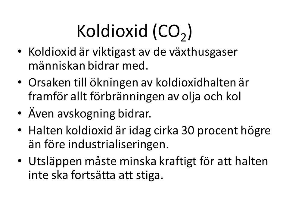 Koldioxid är viktigast av de växthusgaser människan bidrar med. Orsaken till ökningen av koldioxidhalten är framför allt förbränningen av olja och kol