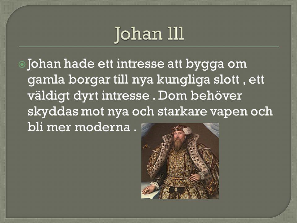  Johan hade ett intresse att bygga om gamla borgar till nya kungliga slott, ett väldigt dyrt intresse. Dom behöver skyddas mot nya och starkare vapen