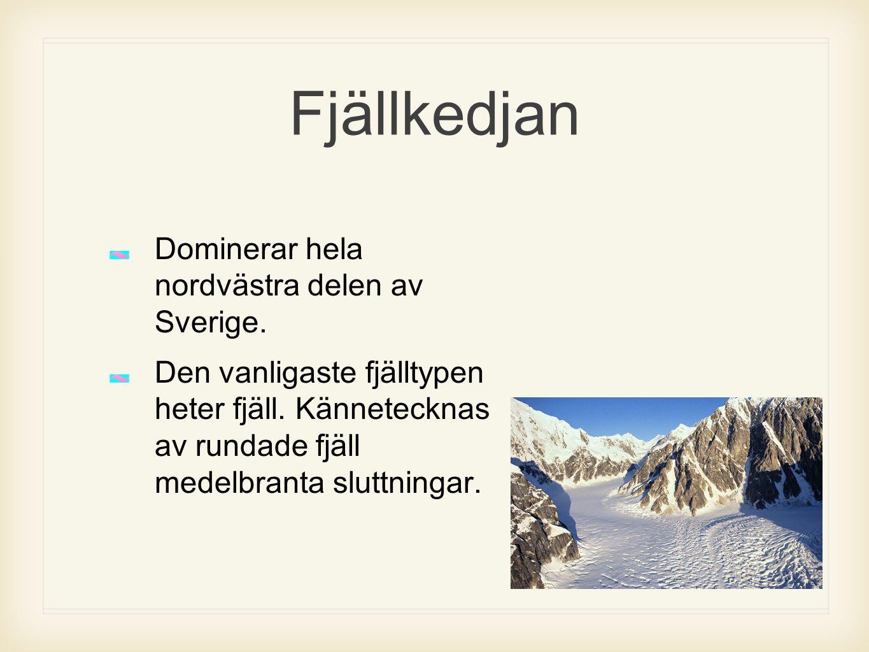 Fjällkedjan Dominerar hela nordvästra delen av Sverige. Den vanligaste fjälltypen heter fjäll. Kännetecknas av rundade fjäll medelbranta sluttningar.