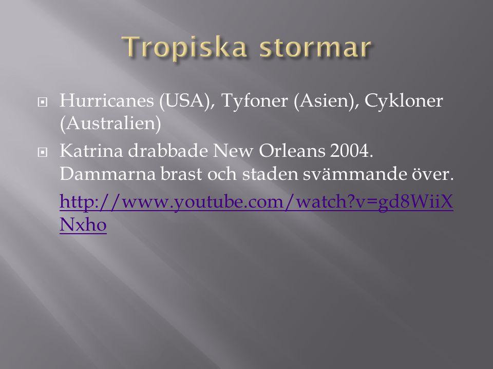  Hurricanes (USA), Tyfoner (Asien), Cykloner (Australien)  Katrina drabbade New Orleans 2004. Dammarna brast och staden svämmande över. http://www.y
