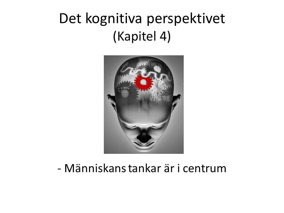 Det kognitiva perspektivet (Kapitel 4) - - Människans tankar är i centrum