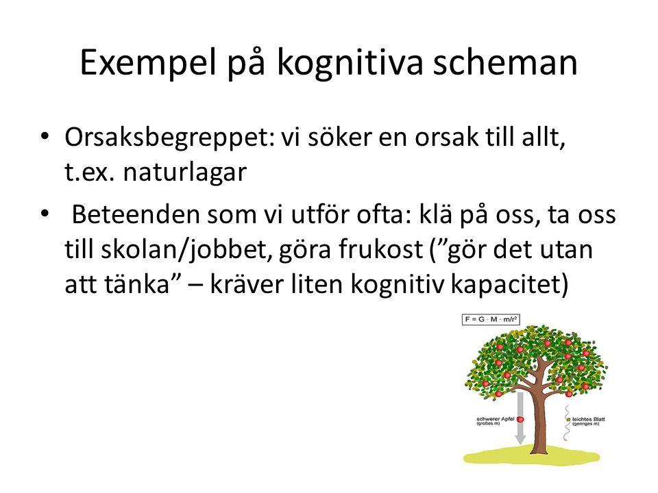 Exempel på kognitiva scheman Orsaksbegreppet: vi söker en orsak till allt, t.ex. naturlagar Beteenden som vi utför ofta: klä på oss, ta oss till skola