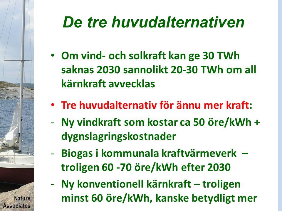 Nature Associates De tre huvudalternativen Om vind- och solkraft kan ge 30 TWh saknas 2030 sannolikt 20-30 TWh om all kärnkraft avvecklas Tre huvudalt
