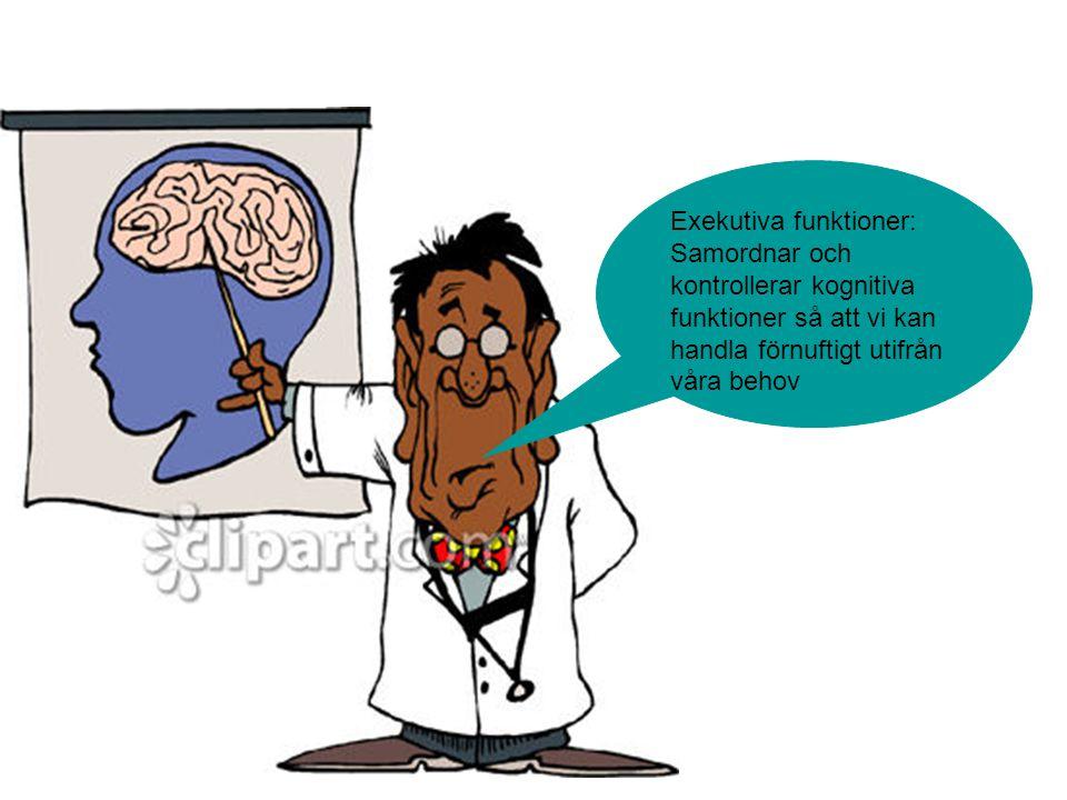 Exekutiva funktioner: Samordnar och kontrollerar kognitiva funktioner så att vi kan handla förnuftigt utifrån våra behov