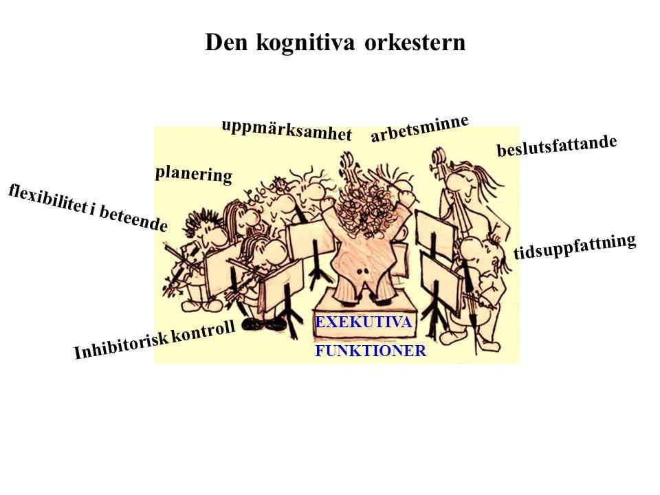 Den kognitiva orkestern uppmärksamhet flexibilitet i beteende beslutsfattande Inhibitorisk kontroll planering tidsuppfattning arbetsminne EXEKUTIVA FU