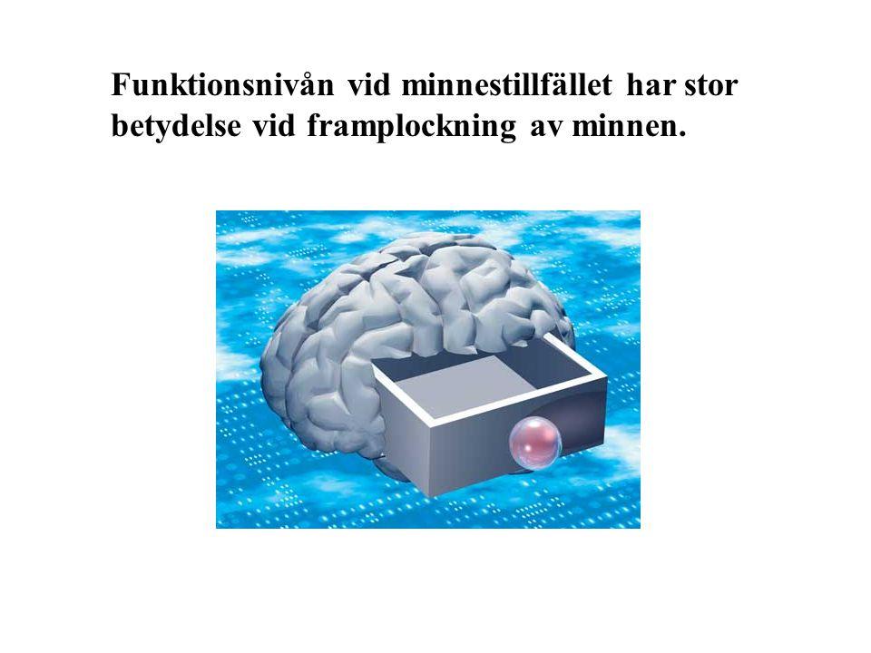 Funktionsnivån vid minnestillfället har stor betydelse vid framplockning av minnen.