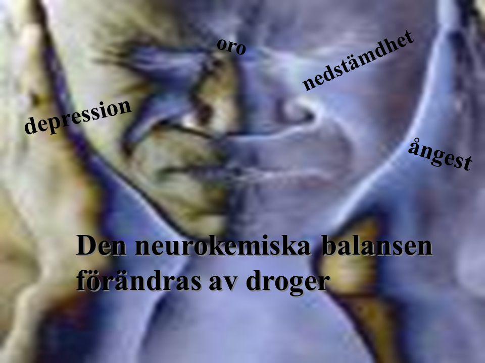 Den neurokemiska balansen förändras av droger Den neurokemiska balansen förändras av droger ångest depression oro nedstämdhet