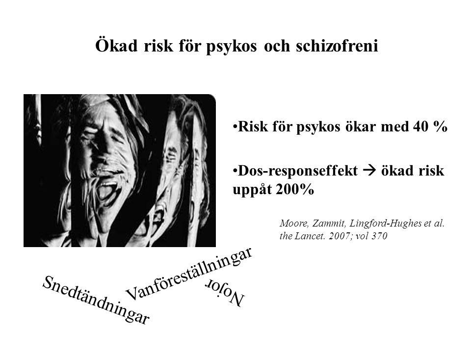 Ökad risk för psykos och schizofreni Snedtändningar Nojor Vanföreställningar Risk för psykos ökar med 40 % Dos-responseffekt  ökad risk uppåt 200% Mo