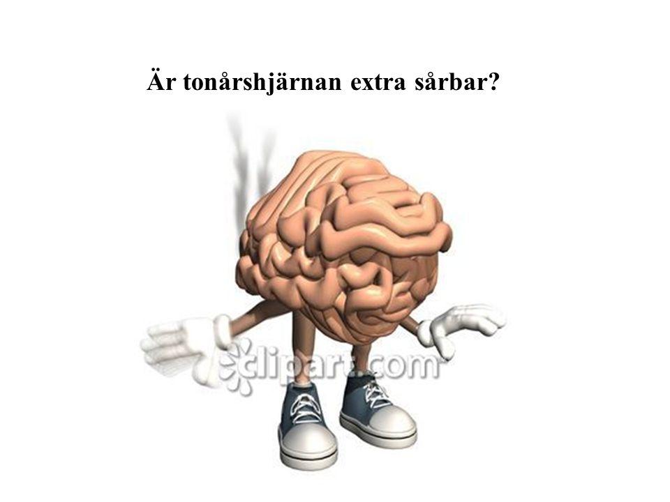Är tonårshjärnan extra sårbar?