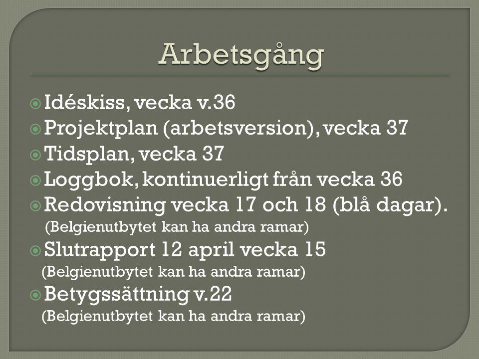  Idéskiss, vecka v.36  Projektplan (arbetsversion), vecka 37  Tidsplan, vecka 37  Loggbok, kontinuerligt från vecka 36  Redovisning vecka 17 och 18 (blå dagar).
