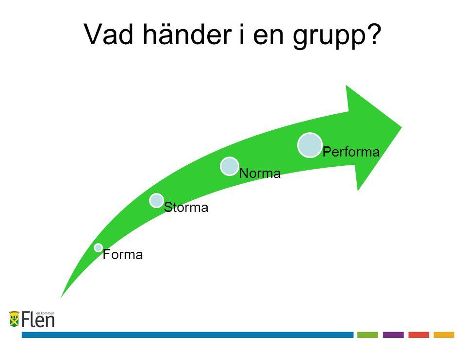 Vad händer i en grupp Forma Storma Norma Performa