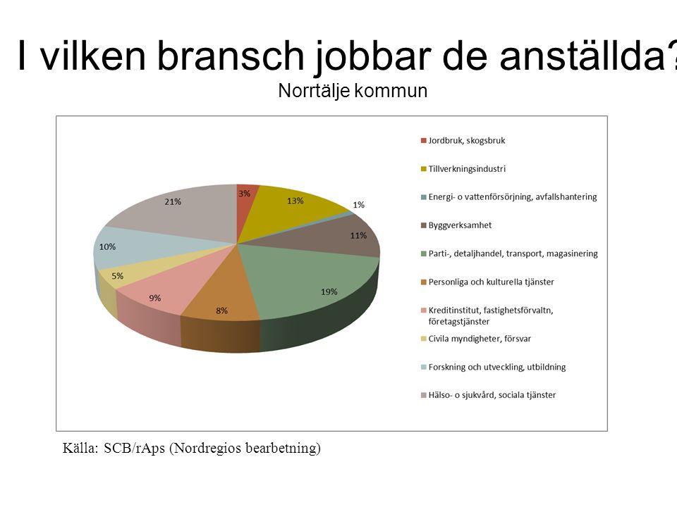 I vilken bransch jobbar de anställda Norrtälje kommun