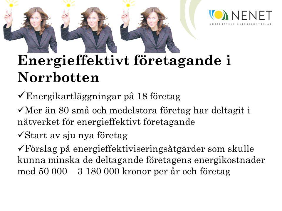 Energieffektivt företagande i Norrbotten Energikartläggningar på 18 företag Mer än 80 små och medelstora företag har deltagit i nätverket för energieffektivt företagande Start av sju nya företag Förslag på energieffektiviseringsåtgärder som skulle kunna minska de deltagande företagens energikostnader med 50 000 – 3 180 000 kronor per år och företag