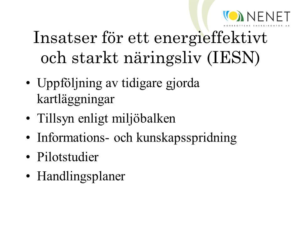 Insatser för ett energieffektivt och starkt näringsliv (IESN) Uppföljning av tidigare gjorda kartläggningar Tillsyn enligt miljöbalken Informations- och kunskapsspridning Pilotstudier Handlingsplaner