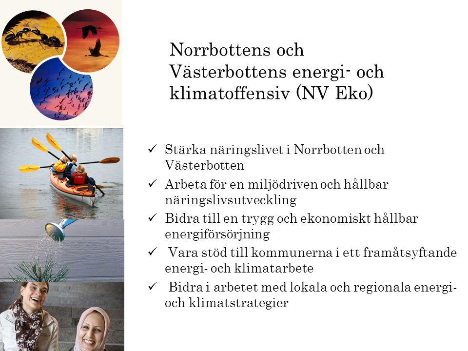 Norrbottens och Västerbottens energi- och klimatoffensiv (NV Eko) Stärka näringslivet i Norrbotten och Västerbotten Arbeta för en miljödriven och hållbar näringslivsutveckling Bidra till en trygg och ekonomiskt hållbar energiförsörjning Vara stöd till kommunerna i ett framåtsyftande energi- och klimatarbete Bidra i arbetet med lokala och regionala energi- och klimatstrategier