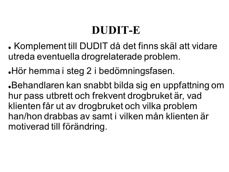 DUDIT-E Komplement till DUDIT då det finns skäl att vidare utreda eventuella drogrelaterade problem. Hör hemma i steg 2 i bedömningsfasen. Behandlaren