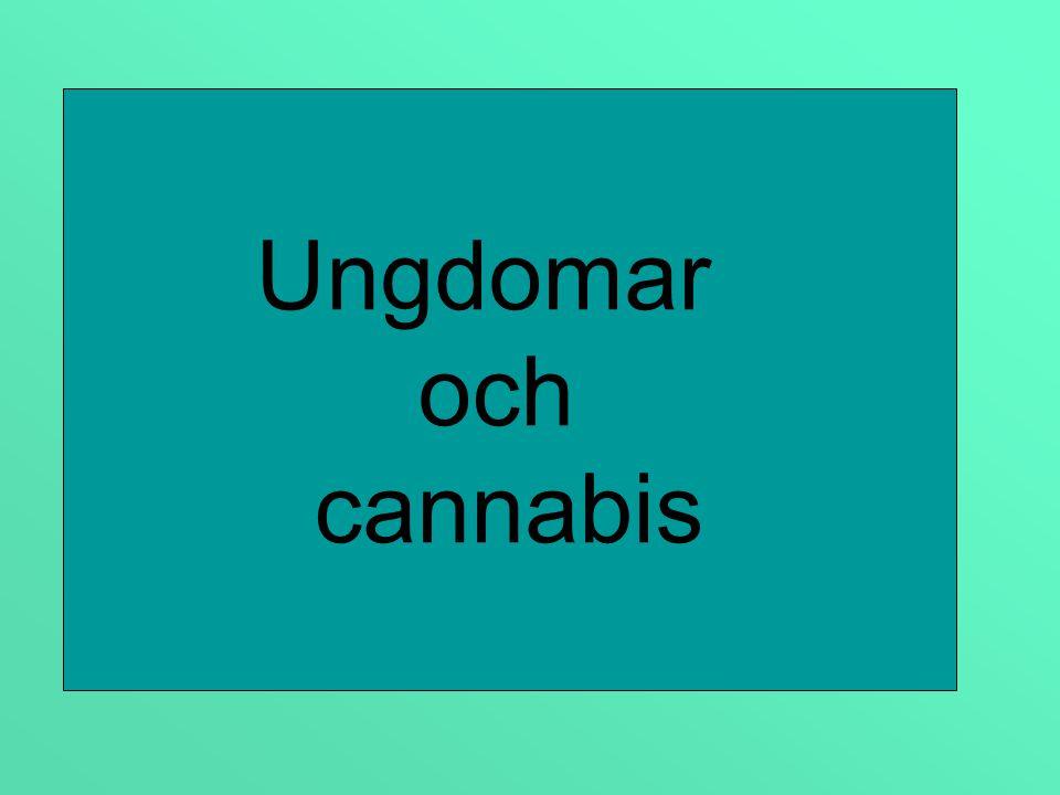 Provat narkotika årskurs 9