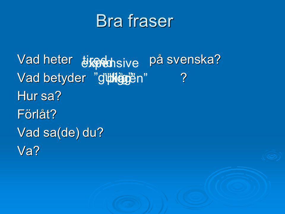 """Bra fraser Vad heter på svenska? Vad betyder ? Hur sa? Förlåt? Vad sa(de) du? Va? tired kind expensive """"gullig"""" """"pigg"""" """"kåren"""""""