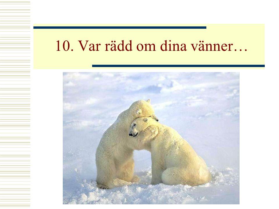 10. Var rädd om dina vänner…