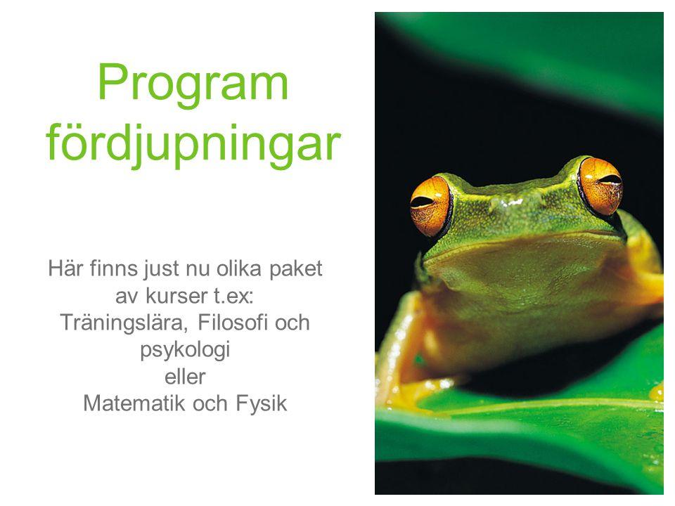 Program fördjupningar Här finns just nu olika paket av kurser t.ex: Träningslära, Filosofi och psykologi eller Matematik och Fysik