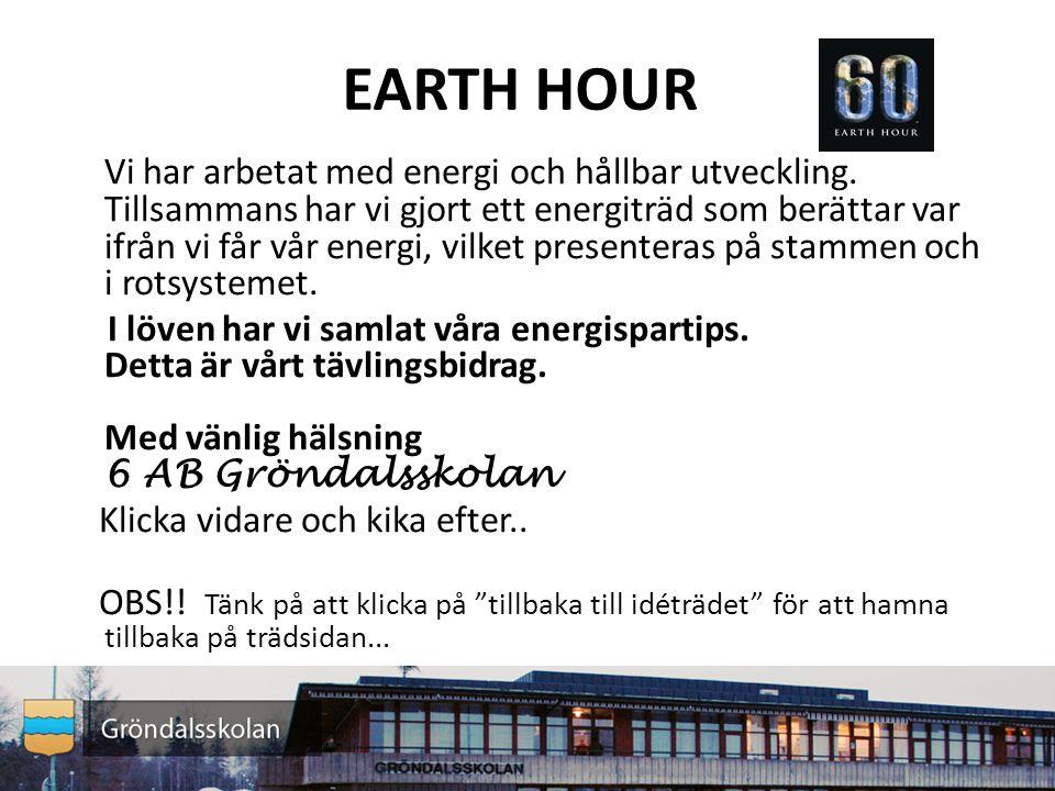 EARTH HOUR Vi har arbetat med energi och hållbar utveckling.