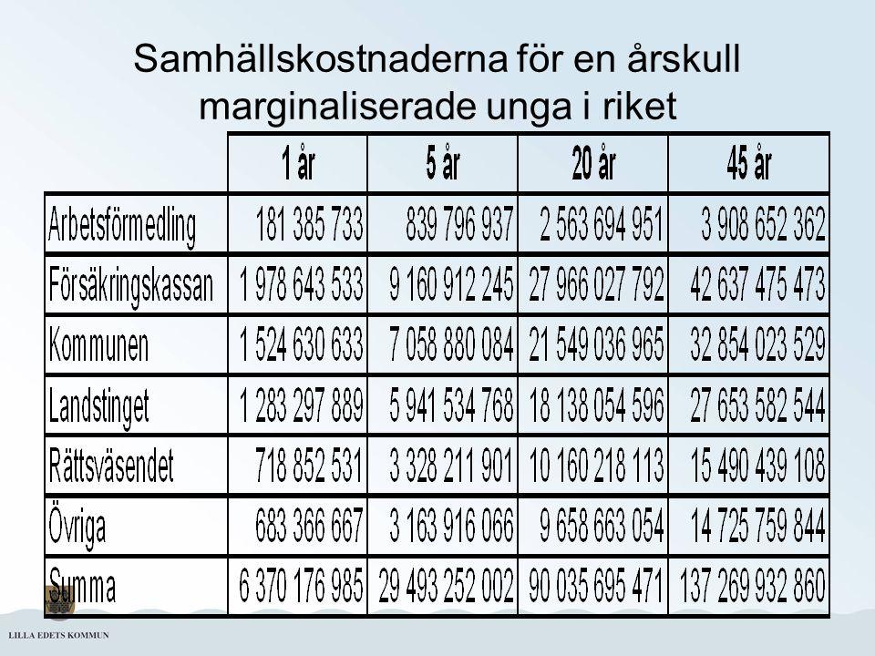 Samhällskostnaderna för en årskull marginaliserade unga i riket