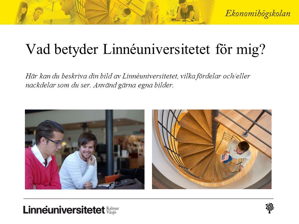 Vad betyder Linnéuniversitetet för mig.