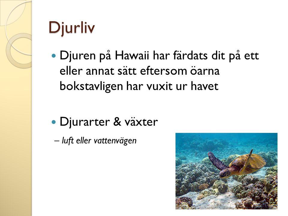 Djurliv Djuren på Hawaii har färdats dit på ett eller annat sätt eftersom öarna bokstavligen har vuxit ur havet Djurarter & växter – luft eller vatten