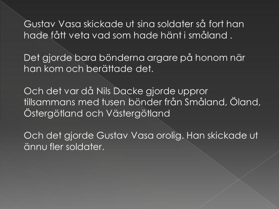 Gustav Vasa skickade ut sina soldater så fort han hade fått veta vad som hade hänt i småland. Det gjorde bara bönderna argare på honom när han kom och