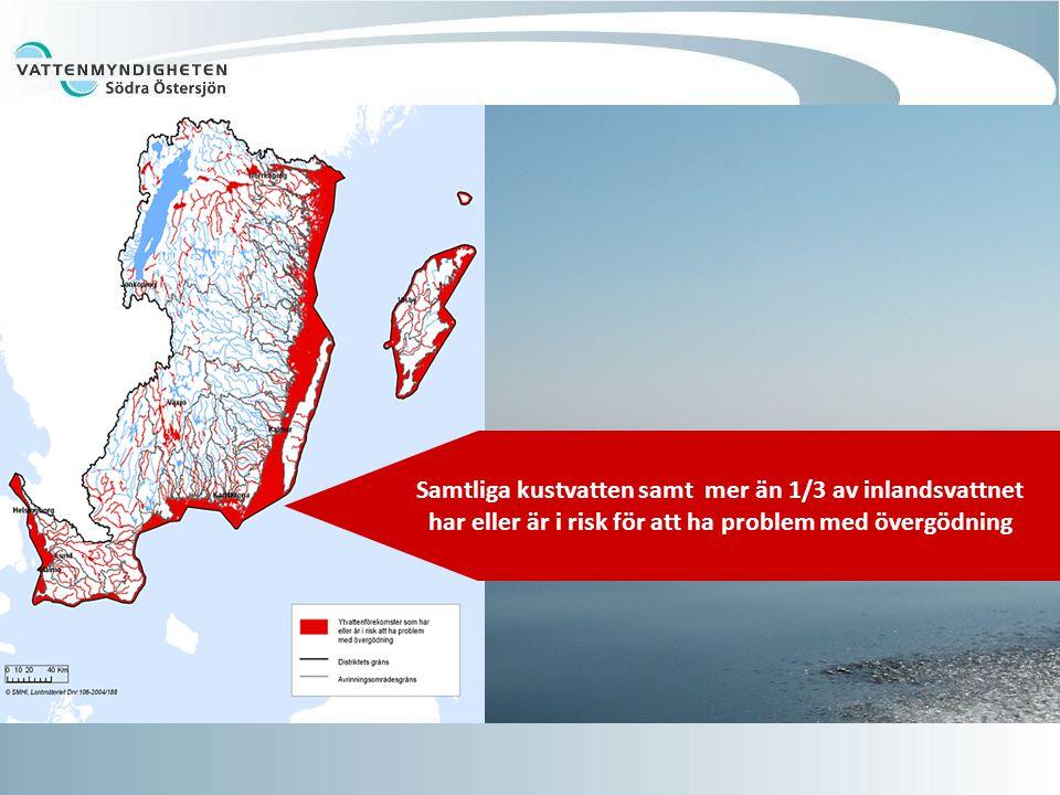Samtliga kustvatten samt mer än 1/3 av inlandsvattnet har eller är i risk för att ha problem med övergödning