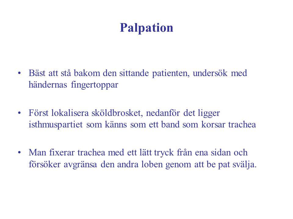 Palpation Bäst att stå bakom den sittande patienten, undersök med händernas fingertoppar Först lokalisera sköldbrosket, nedanför det ligger isthmuspar