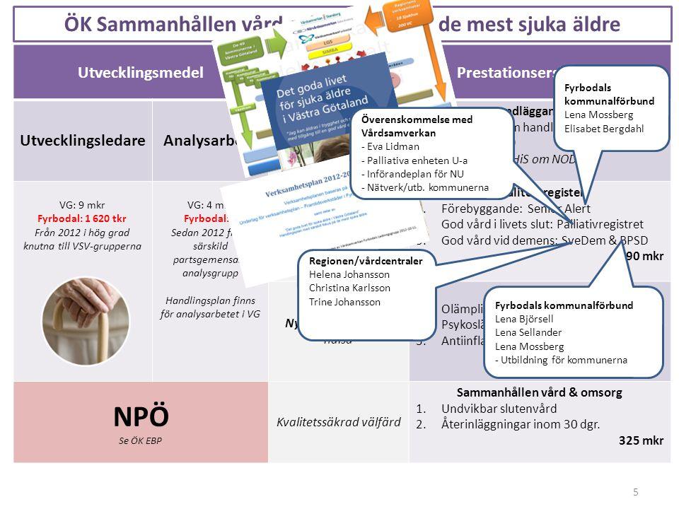 5 Utvecklingsmedel Nationella initiativ Prestationsersättningar UtvecklingsledareAnalysarbete Ledningskraft Grundläggande krav 1.VG-gemensam handlings