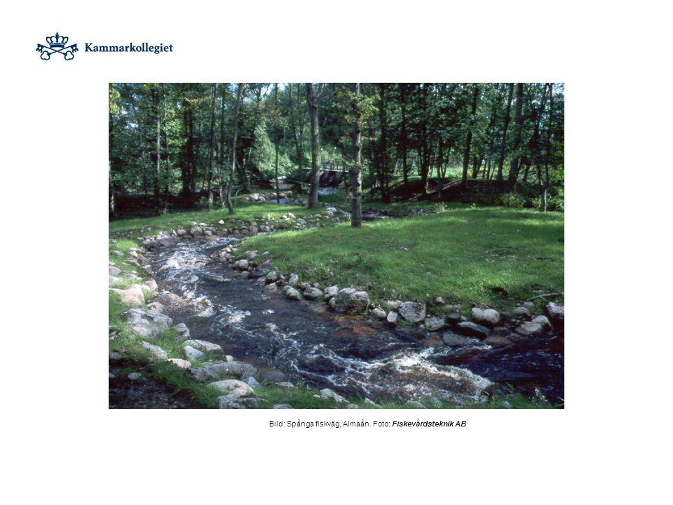 Bild: Spånga fiskväg, Almaån. Foto: Fiskevårdsteknik AB