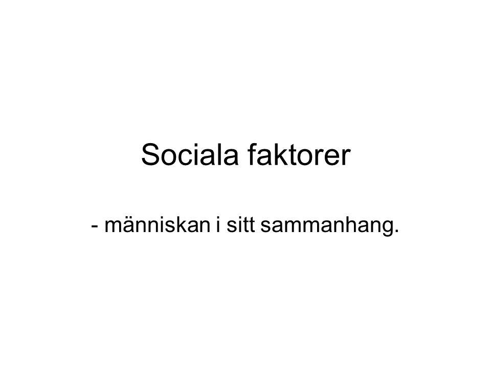 Sociala faktorer - människan i sitt sammanhang.