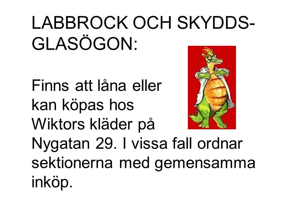 LABBROCK OCH SKYDDS- GLASÖGON: Finns att låna eller kan köpas hos Wiktors kläder på Nygatan 29. I vissa fall ordnar sektionerna med gemensamma inköp.