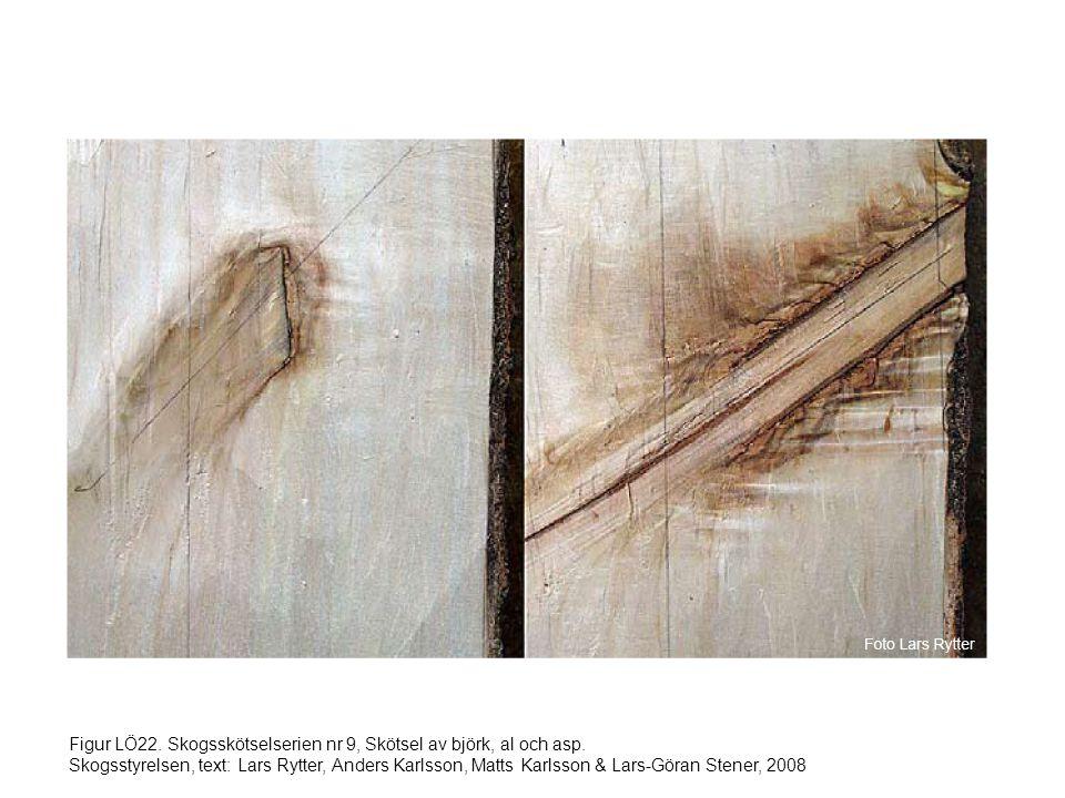 Figur LÖ22. Skogsskötselserien nr 9, Skötsel av björk, al och asp. Skogsstyrelsen, text: Lars Rytter, Anders Karlsson, Matts Karlsson & Lars-Göran Ste