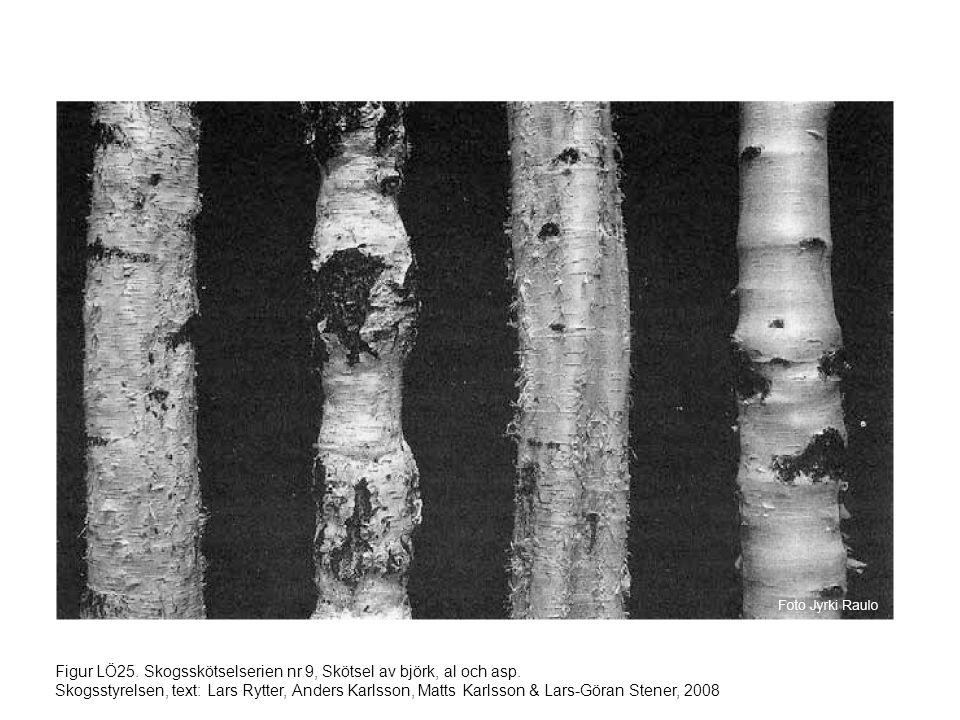 Figur LÖ25. Skogsskötselserien nr 9, Skötsel av björk, al och asp. Skogsstyrelsen, text: Lars Rytter, Anders Karlsson, Matts Karlsson & Lars-Göran Ste