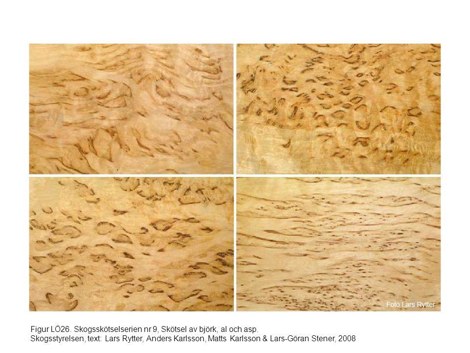 Figur LÖ26. Skogsskötselserien nr 9, Skötsel av björk, al och asp. Skogsstyrelsen, text: Lars Rytter, Anders Karlsson, Matts Karlsson & Lars-Göran Ste