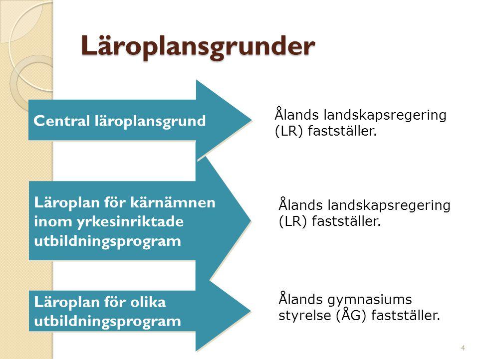 Läroplan för kärnämnen inom yrkesinriktade utbildningsprogram Läroplansgrunder 4 Central läroplansgrund Läroplan för olika utbildningsprogram Ålands landskapsregering (LR) fastställer.