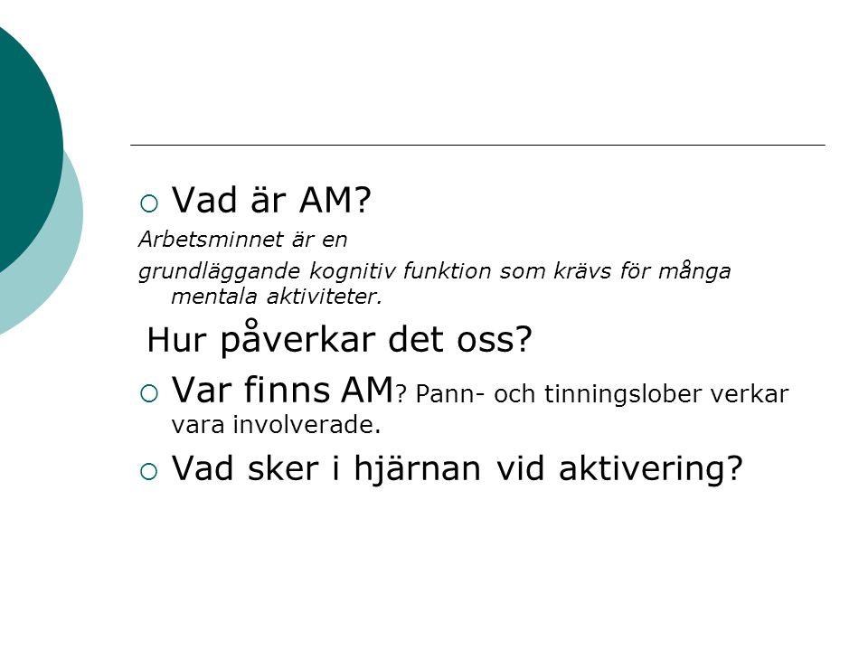 Vad är AM.