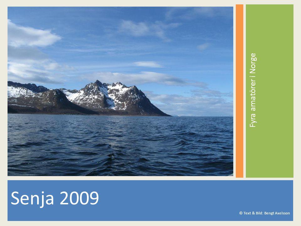 Senja 2009 © Text & Bild: Bengt Axelsson Fyra amatörer i Norge