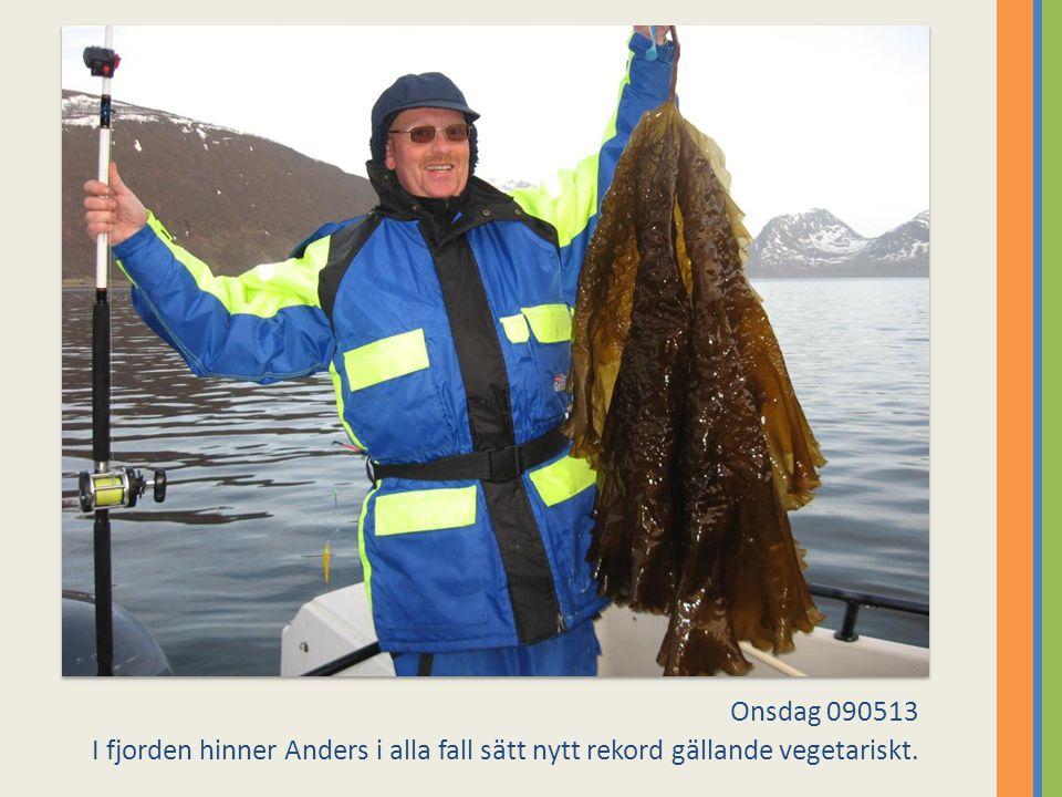 Onsdag 090513 I fjorden hinner Anders i alla fall sätt nytt rekord gällande vegetariskt.