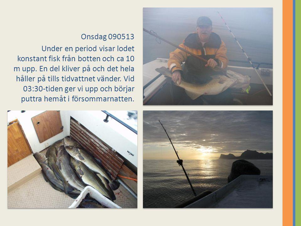 Onsdag 090513 Under en period visar lodet konstant fisk från botten och ca 10 m upp. En del kliver på och det hela håller på tills tidvattnet vänder.