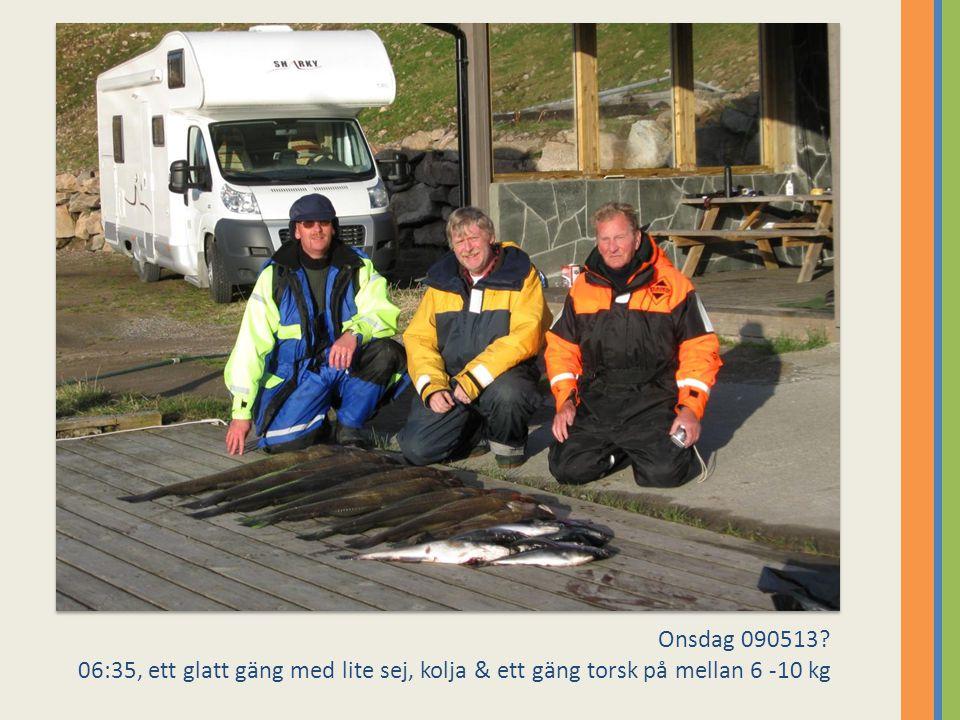 Onsdag 090513? 06:35, ett glatt gäng med lite sej, kolja & ett gäng torsk på mellan 6 -10 kg